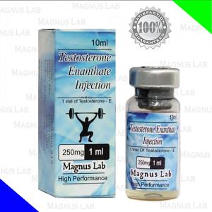 Testosterona Enantato de Magnus Lab es una hormona masculina. Para nuestra discusión, la testosterona se considera una hormona masculina sintética fabricada con el propósito de lograr el crecimiento muscular.