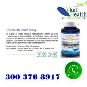 Castaño De Indias 500 mg X 100 Capsulas