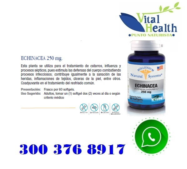 Echinacea 250 mg X 60 Capsulas Blandas