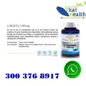 L-Arginina 1.000 mg X 60 Cap Blandas