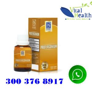 Protergonium